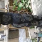 Stummer diener, Black Man, Skulptur, Kettensäge, Berlin , Brandenburg, geschnitzt, Handmade, Holz