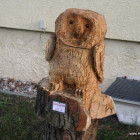 Schleiereule, Skulptur, Kettensäge, Berlin , Brandenburg, geschnitzt, Handmade, Holz
