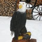 Weißkopfseeadler, lackiert, Skulptur, Kettensäge, Berlin , Brandenburg, geschnitzt, Handmade, Holz