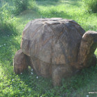 Schildkröte groß, Skulptur, Kettensäge, Berlin , Brandenburg, geschnitzt, Handmade, Holz